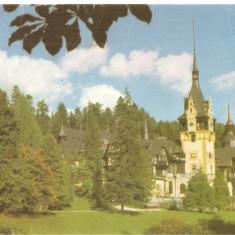 CPI (B4355) SINAIA. MUZEUL PELES, EDITURA MERIDIANE, CIRCULATA, 7.12.1970, - Carte Postala Muntenia dupa 1918, Fotografie
