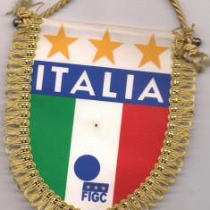 Fanion-FEDEREATIA ITALIANA DE FOTBAL - Fanion fotbal