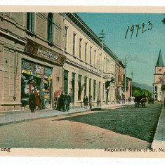 60 - Arges, CAMPULUNG, Staicu store - old postcard - unused