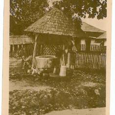 448 - Arges, CAMPULUNG, Ethnic woman, Country Life - old postcard - unused - Carte Postala Muntenia 1904-1918, Necirculata, Printata