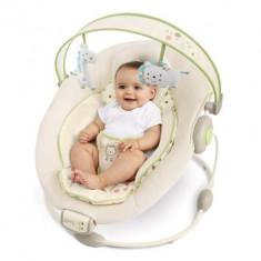 Bright Starts - Sandstone Cradling Bouncer - Set mobila copii