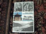 Pe Valea Moldovei - Victor Tufescu
