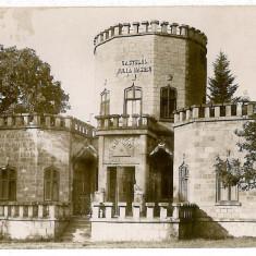 113 - Prahova, CAMPINA, Iulia Hasdeu Castle - old postcard - unused, Necirculata, Fotografie