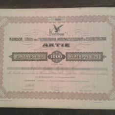 Document vechi-ACTIUNE-DUMBRAVENI