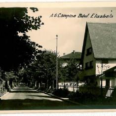 117 - Prahova, CAMPINA, Elisabeth Ave. - old postcard, real PHOTO - used - 1941, Circulata, Fotografie