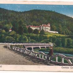 Carte postala(ilustrata)-BUSTENI-Castelul Cantacuzino