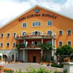 Egri Korona Borház és Wellness Hotel Demjén, Ungaria - 2 nopți pentru 2 persoane în cursul săptămânii cu demipensiune - Circuit - Turism Extern