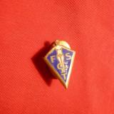 Insigna veche cu talpica- FSGT - Fed. Franceza de Gimnastica , h= 1,8 cm