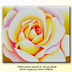 Pictura cu trandafir - ulei pe panza 60x50cm, livrare gratuita in 24h