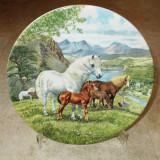 Farfurie - decorativa / de colectie - portelan Englezesc - Davenport Pottery -1990 + Certificat de autenticitate, Farfurii