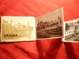 Carnet cu 9 Fotografii Oradea si Imprejurimi : Valea Iadului ,Stana de Vale ...- anii '50., Necirculata