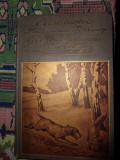 Die dreffur und fuhrung des gebrauchshundes ( cu ilustratii/an 1912/coperta frumoasa/caini de vanatoare), Alta editura