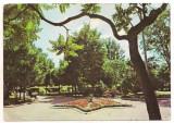 #carte postala(ilustrata)-RADAUTI-vedere din parc