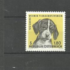 AUSTRIA 1966 - PUI DE CAINE SETTER ENGLEZ, timbru nestampilat, DF24