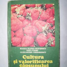 CULTURA SI VALORIFICAREA CAPSUNULUI MARIA ELENA CEAUSESCU RAUL VIERU