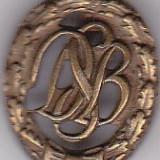 Insigna Germania DSB, Europa