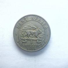 AFRICA DE EST BRITANICA - 1 SHILLING 1950