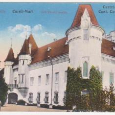 Carei, Satu Mare, Castelul Carolyi, necirculata, 1916 - Carte Postala Crisana 1904-1918