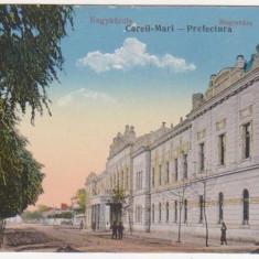 Carei, Satu Mare, Prefectura, necirculata, 1916 - Carte Postala Crisana 1904-1918