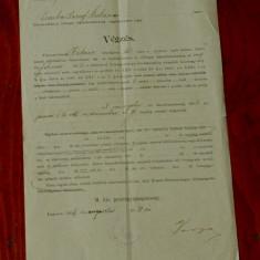 Document act vechi in Limba maghiara din Banat cu stampila Lugoj 1904 - Pasaport/Document