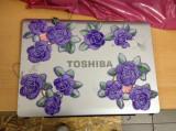 Capac display Toshiba Satellite L300   A30.166