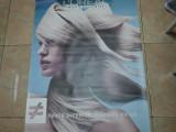 Postere salon
