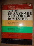 Atlas de anatomie a pasarilor domestice ( cu numeroase figuri)- V.Ghetie,V.Cotofan,St.Chitulescu,A.Hillebrand