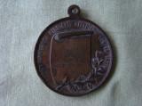 """Medalia """"Cuza-Kogalniceanu - Statuile lor in Iasi"""
