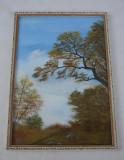 Frumoasa pictura semnata A. Vikman
