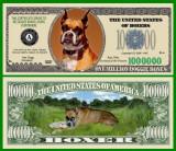 USA 1 Million Dollars Caine Boxer UNC