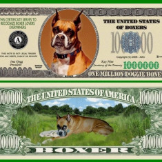 USA 1 Million Dollars Caine Boxer UNC