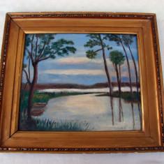 Pictura veche realizata in ulei pe placaj - Tablou autor neidentificat