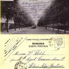 Barlad (Vaslui) - O parte din Bulevardul Palade - rara - Carte Postala Moldova pana la 1904