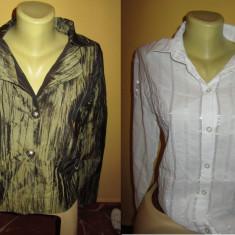 Set de 4 camasi de dama - Camasa dama, Marime: Alta, Culoare: Multicolor, Maneca lunga, Casual, Bumbac