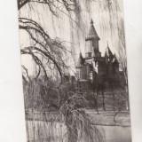 Bnk cp Timisoara - Catedrala Mitropoliei Banatului - necirculata - Carte Postala Banat dupa 1918
