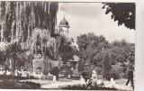 Bnk cp Radauti - Vedere din parc - uzata