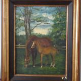 Tablou Cai la pascut-ulei pe panza-40 x 30, 5 cm - Tablou autor neidentificat
