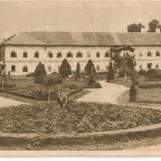 CPI (B4401) ORADEA. BAILE 1 MAI, EDITURA LIBRARIA NOASTRA, REPUBLICA POPULARA ROMANA, NECIRCULATA, 309 - Carte Postala Crisana dupa 1918, Printata