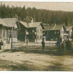 2196 - Sibiu, PALTINIS, Hohe Rinne - old postcard, real PHOTO - unused - Carte Postala Transilvania dupa 1918, Necirculata, Fotografie