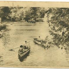 Carte postala BUCURESTI - Vedere din Cismigiu - Carte Postala Muntenia dupa 1918, Necirculata, Fotografie