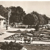 CPI (B4440) ORADEA. BAILE FELIX, EDITURA MERIDIANE, CIRCULATA, STAMPILA, TIMBRU, 1968 - Carte Postala Crisana dupa 1918, Fotografie