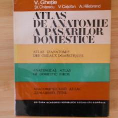 V. GHETIE--ATLAS DE ANATOMIE A PASARILOR DOMESTICE - Carte Medicina veterinara
