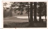 "CPI (B4452) LACUL SFANTA ANA, NECIRCULATA, FOTO ORIG. ""FOTOFILM"" CLUJ, 1934, Fotografie"