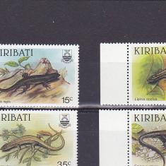 Fauna ,reptile,Kiribati.