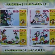 LOT TIMBRE ROMANIA - CERCETASII ROMANIEI 2005 - RO 0105