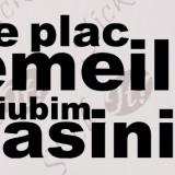 Ne Plac Femeile, Dar Iubim Masinile_Sticker Auto_Tuning_CDEC-117-Dimensiune: 15 cm. X 7.5 cm. - Orice culoare, Orice dimensiune