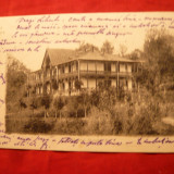 Ilustrata clasica Govora - Hotelul Statului, circ. 1903 cu 5 Bani Spic de Grau