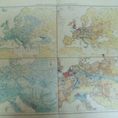 Harta color Europa Cantitatea de precipitatii si densitatea populatiei Leipzig 1899