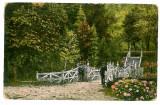 569 - Arges, PITESTI, Trivale Park - old postcard - used - 1928, Circulata, Printata