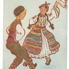 515 - DOBROGEA, Maranghiile, joc romanesc - I.P. old postcard - unused - 1957 - Carte postala tematica, Necirculata, Printata
